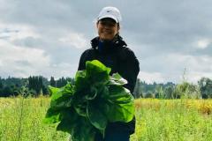Hopelink gleaning